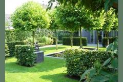 tuin met vijver
